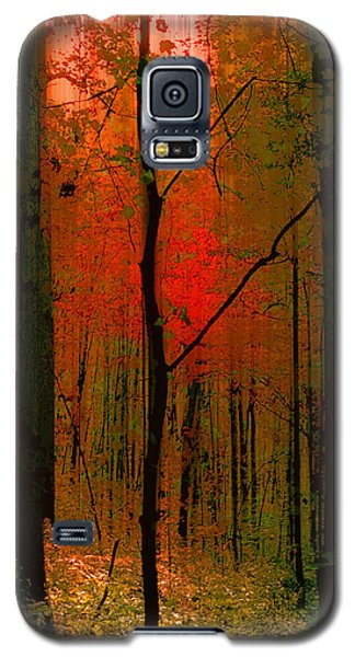3734 Galaxy S5 Case by Peter Holme III