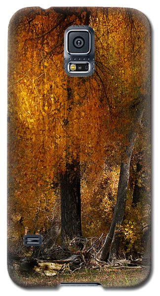 3777 Galaxy S5 Case by Peter Holme III