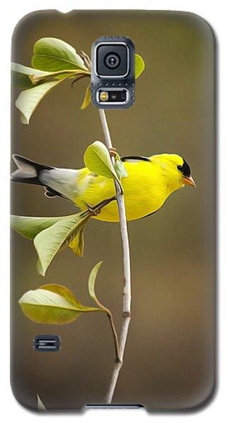American Goldfinch Galaxy S5 Case