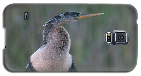 Anhinga Galaxy S5 Case by Mark Newman