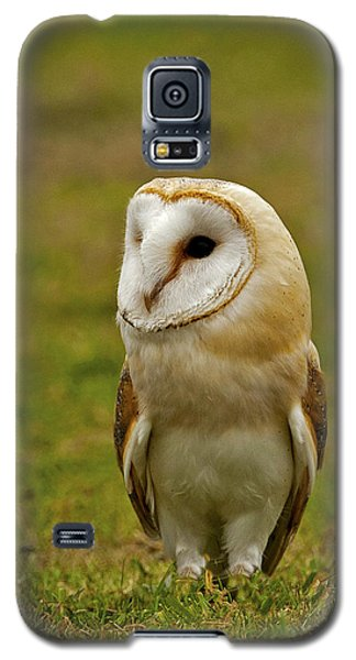 Galaxy S5 Case featuring the photograph Barn Owl by Paul Scoullar