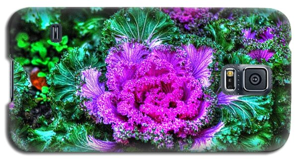 Galaxy S5 Case featuring the photograph Flower by Ed Roberts
