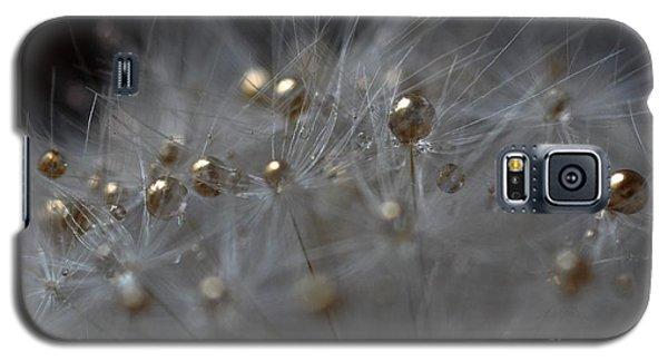 Golden Flower Galaxy S5 Case by Sylvie Leandre
