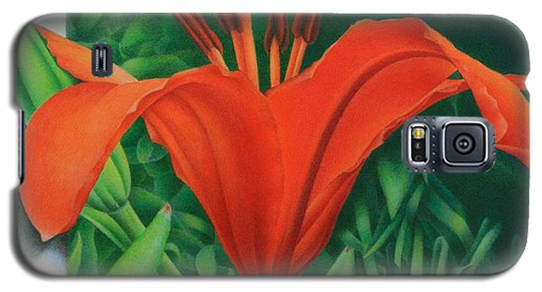 Orange Lily Galaxy S5 Case by Pamela Clements