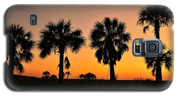 Galaxy S5 Case featuring the photograph 4 Palms In After Glow by Richard Zentner