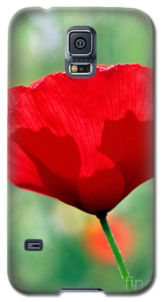 Galaxy S5 Case featuring the photograph Poppy Flower by George Atsametakis