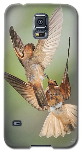 Galaxy S5 Case featuring the photograph Shining Sunbeam Hummingbirds by Dan Suzio