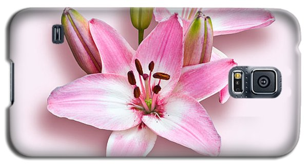 Spray Of Pink Lilies Galaxy S5 Case by Jane McIlroy
