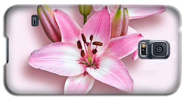 Spray Of Pink Lilies Galaxy S5 Case