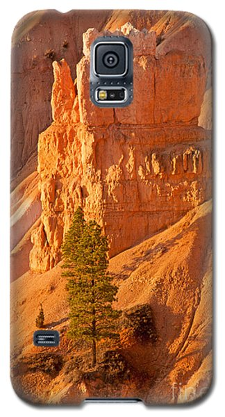 Sunrise At Sunset Point Bryce Canyon National Park Galaxy S5 Case