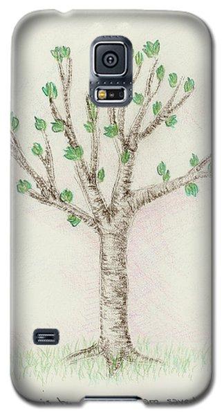 4 Trees-3rd Tree Spring Galaxy S5 Case