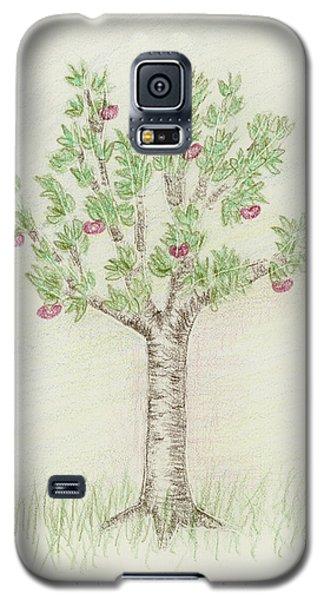 4 Trees-4th Tree Summer Galaxy S5 Case