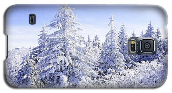 Winter Along The Highland Scenic Highway Galaxy S5 Case