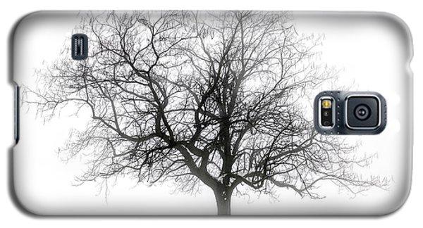 Winter Tree In Fog Galaxy S5 Case