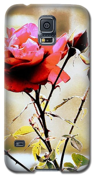 Galaxy S5 Case featuring the photograph 40 Something by Faith Williams