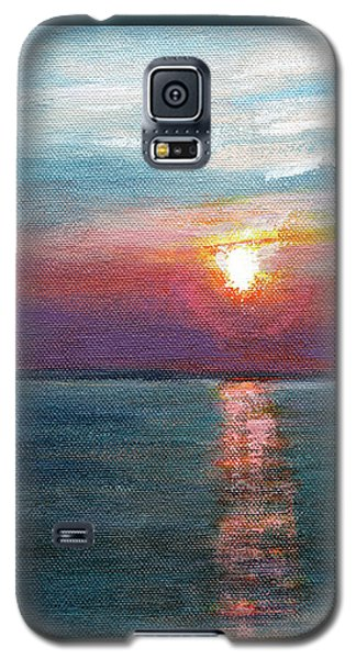 Rcnpaintings.com Galaxy S5 Case