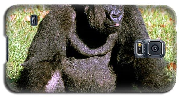 Adult Male Western Lowland Gorilla Galaxy S5 Case