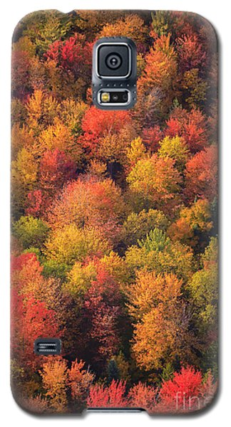 Aerial View Of Fall Foliage In Vermont Galaxy S5 Case