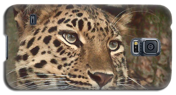 Galaxy S5 Case featuring the photograph Amur Leopard by Chris Boulton