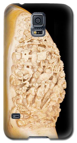 Carved Hornbill Skull Galaxy S5 Case