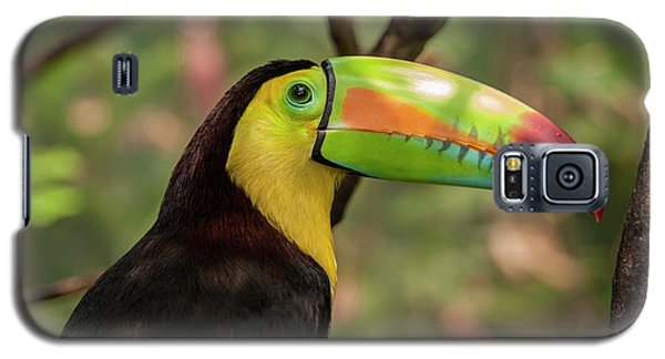 Central America, Honduras, Roatan Galaxy S5 Case