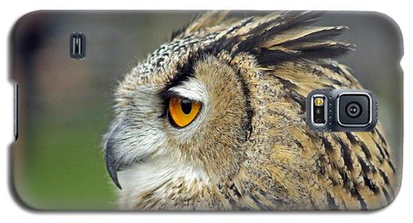 European Eagle Owl Galaxy S5 Case