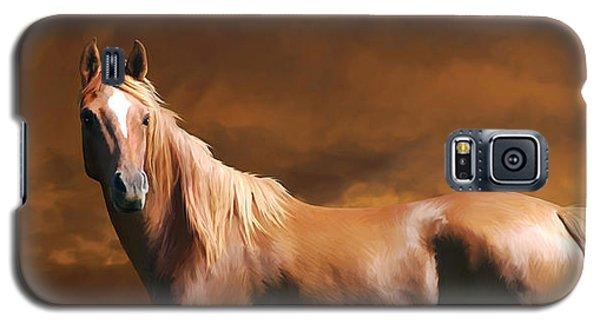 5. Fancy Galaxy S5 Case