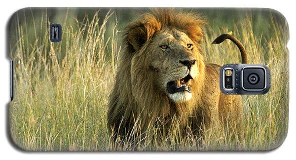 King Of The Savanna Galaxy S5 Case