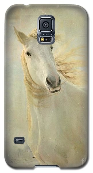 Galaxy S5 Case featuring the photograph Merry Christmas by Dorota Kudyba