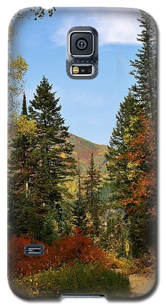 Galaxy S5 Case featuring the photograph Natures Beauty by Bruce Bley