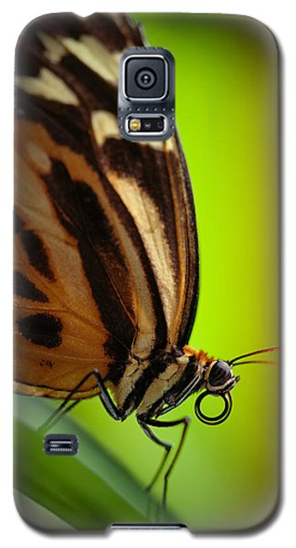 Galaxy S5 Case featuring the photograph Resting Butterfly by Zoe Ferrie