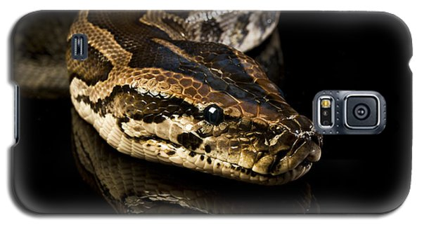 Snake Galaxy S5 Case by Gunnar Orn Arnason