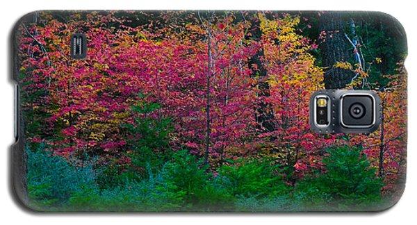Untitled Galaxy S5 Case by Kristen R Kennedy