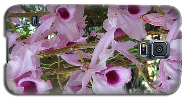 Orchids--dendrobium Galaxy S5 Case