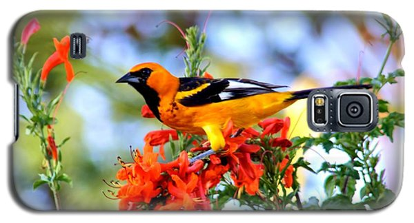 Spot-breasted Oriole Galaxy S5 Case