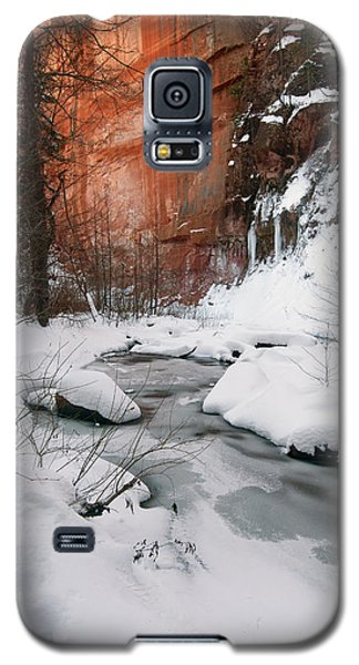 16x20 Canvas - West Fork Snow Galaxy S5 Case