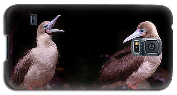 South America, Ecuador, Galapagos Galaxy S5 Case