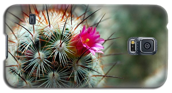 734a Tubular Cactus Flower Galaxy S5 Case
