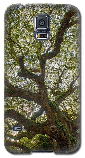 Island Angel Oak Tree Galaxy S5 Case