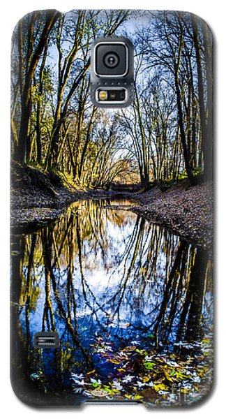 Treasure Of Leaves Galaxy S5 Case