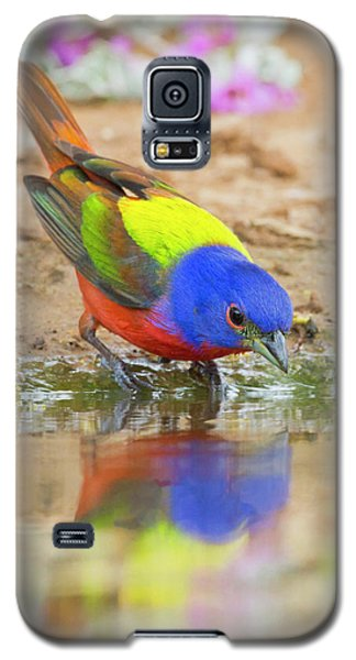 Bunting Galaxy S5 Case - Painted Bunting (passerina Ciris by Larry Ditto