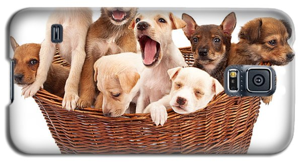 A Basket Of Puppies  Galaxy S5 Case