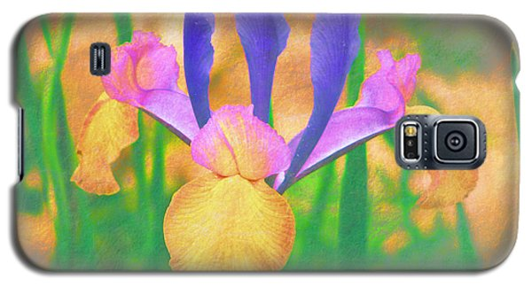 A Bearded Iris In My Vincent Van Gogh Garden Galaxy S5 Case by Douglas MooreZart