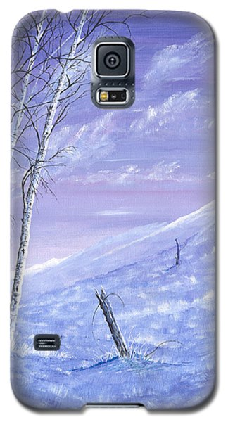 A Blue Winter Galaxy S5 Case