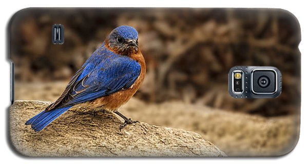 A Bluebird In Kansas Galaxy S5 Case