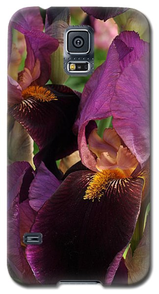 Galaxy S5 Case featuring the photograph A Bouquet Of Lilies by Sabine Edrissi