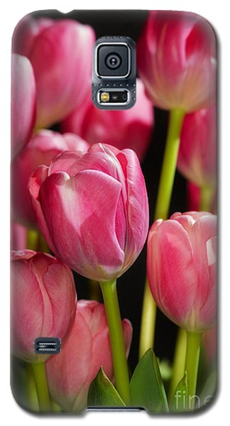 A Bouquet Of Pink Tulips Galaxy S5 Case by Nick  Biemans
