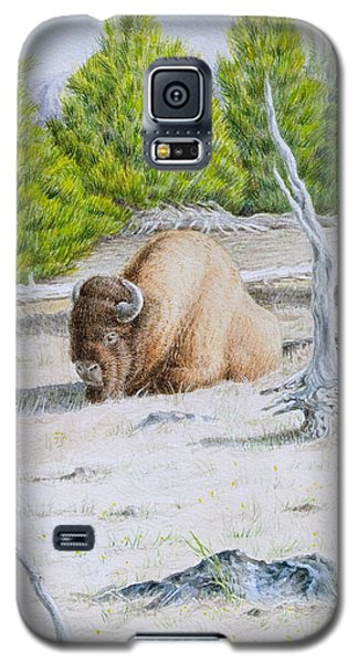 A Buffalo Sits In Yellowstone Galaxy S5 Case