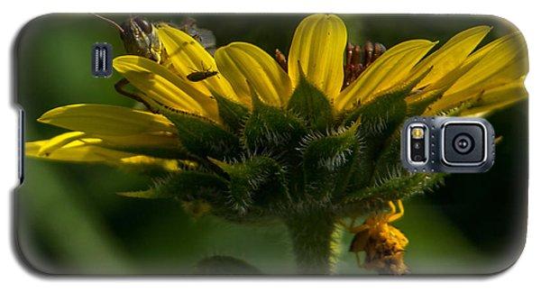 A Bugs World Galaxy S5 Case by Ernie Echols