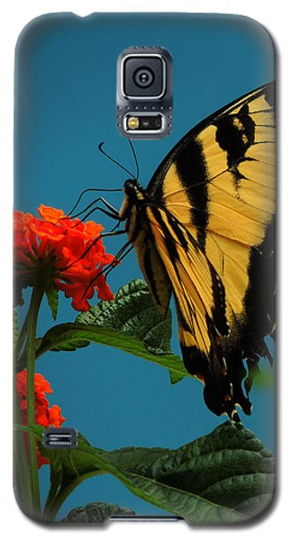 Galaxy S5 Case featuring the photograph A Butterfly by Raymond Salani III